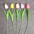 튤립 가지 조화 1p 7colors