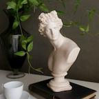 아폴로 스킨 수지 프렌치 오브제 인테리어 장식 장식품 석고상