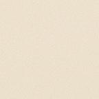 제일단색벽지 베이직플러스 419-5 베이지