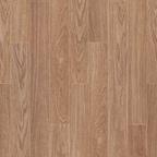 나투스강-네스티 브라운 오크 [K532]