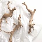 고급 고스트우드 오브제/천연 나무/드리프트 우드 인테리어소품 3size