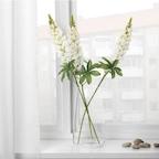 SMYCKA 스뮈카 조화, 루핀, 화이트74 cm