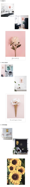 감성사진,로맨틱,꽃사진,꽃포스터,식물포스터,식물인테리어
